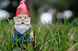 /gallery/Baby_Paxton_the_Garden_Gnome_by_mia_goober (1).png